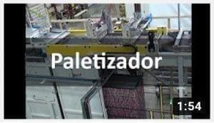 контейнерная паллетайзер