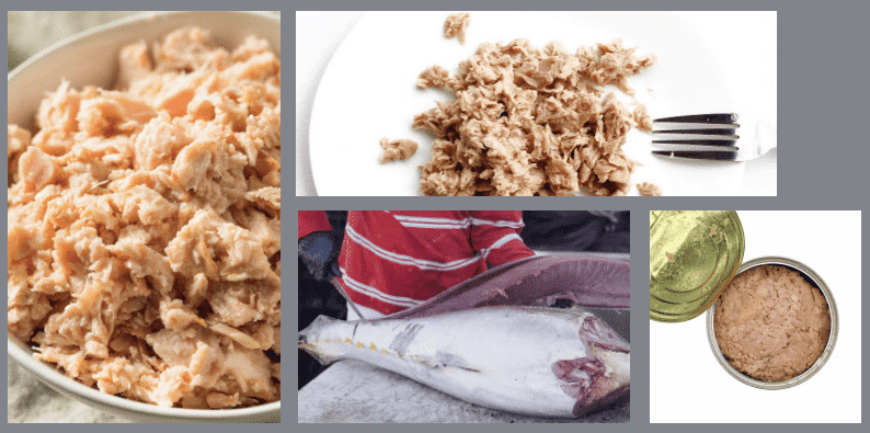 Tuna Processing Synonymous